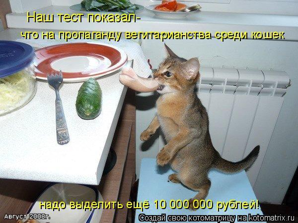 Котоматрица: Наш тест показал- что на пропаганду вегитарианства среди кошек надо выделить ещё 10 000 000 рублей!