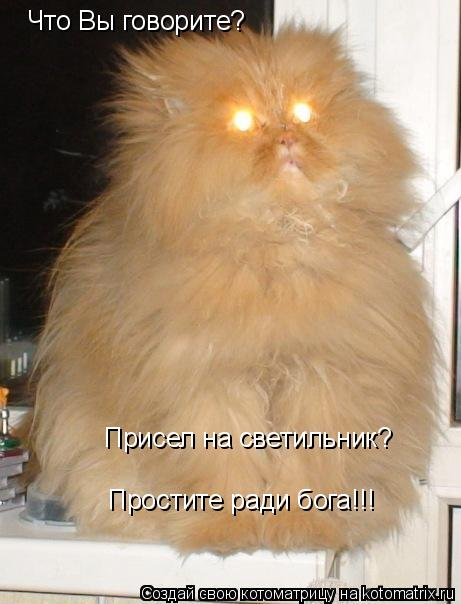 Котоматрица: Что Вы говорите? Присел на светильник? Простите ради бога!!!
