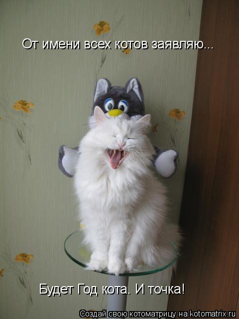 Котоматрица: От имени всех котов заявляю...  Будет Год кота. И точка!