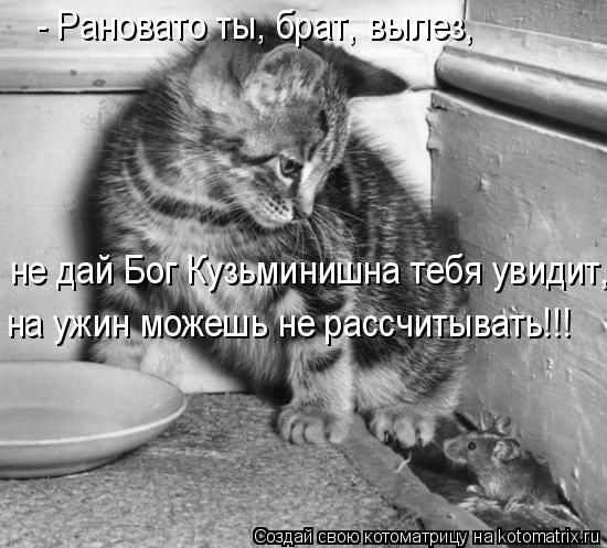 Котоматрица: - Рановато ты, брат, вылез,  не дай Бог Кузьминишна тебя увидит,  на ужин можешь не рассчитывать!!!