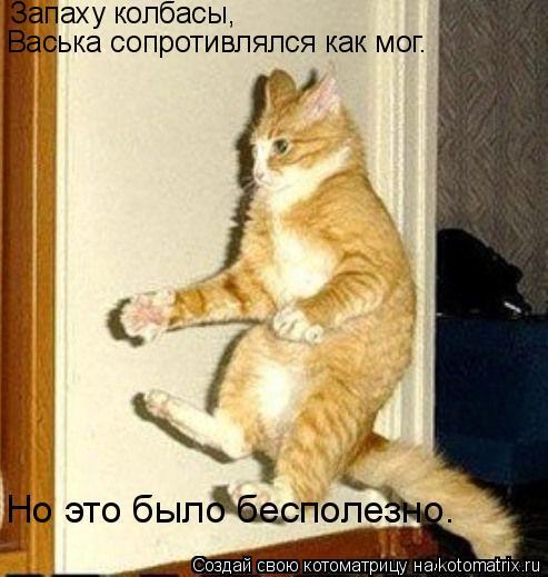 Котоматрица: Запаху колбасы,  Васька сопротивлялся как мог.  Но это было бесполезно.