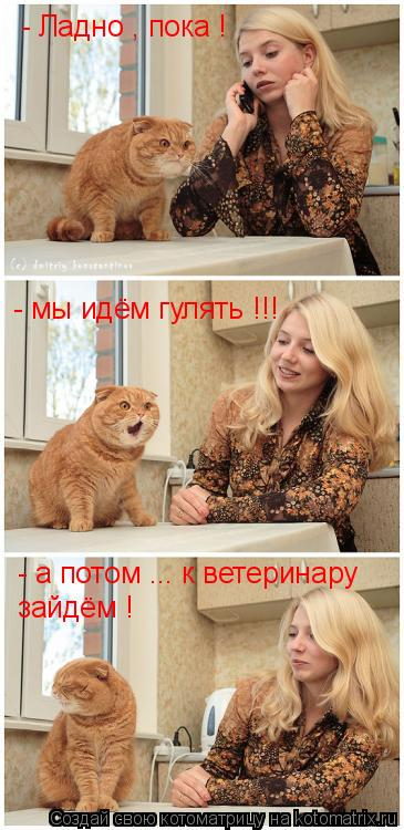Котоматрица: - Ладно , пока ! - мы идём гулять !!! - а потом ... к ветеринару  зайдём !