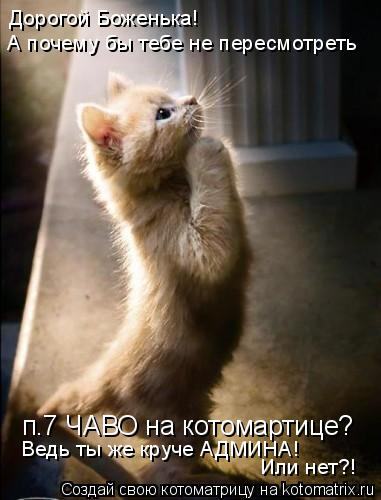 Котоматрица: п.7 ЧАВО на котомартице? А почему бы тебе не пересмотреть Дорогой Боженька! Ведь ты же круче АДМИНА!  Или нет?!