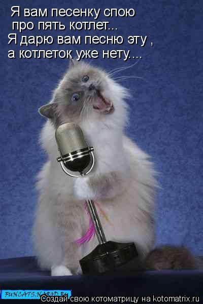 Котоматрица: Я вам песенку спою  про пять котлет... Я дарю вам песню эту , а котлеток уже нету....