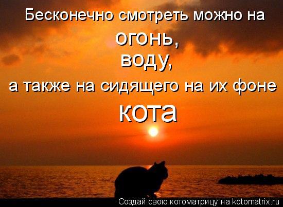 Котоматрица: Бесконечно смотреть можно на огонь, воду, а также на сидящего на их фоне кота