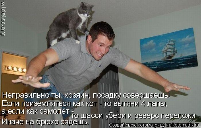 Котоматрица: Неправильно ты, хозяин, посадку совершаешь! Если приземляться как кот - то вытяни 4 лапы, а если как самолёт -  то шасси убери и реверс перелож