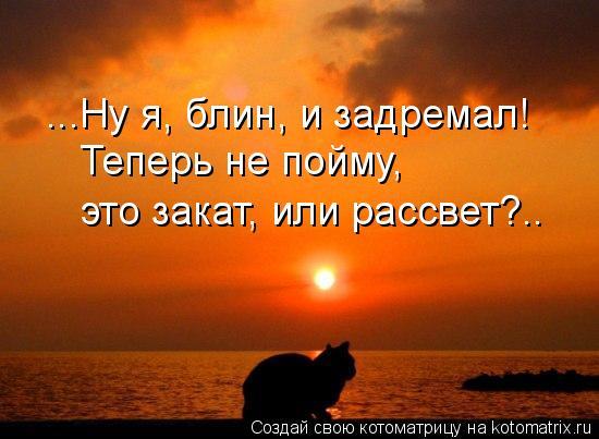 Котоматрица: ...Ну я, блин, и задремал! Теперь не пойму,  это закат, или рассвет?..