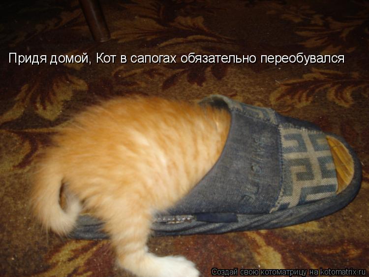 Придя домой, Кот в сапогах обязательно переобувался