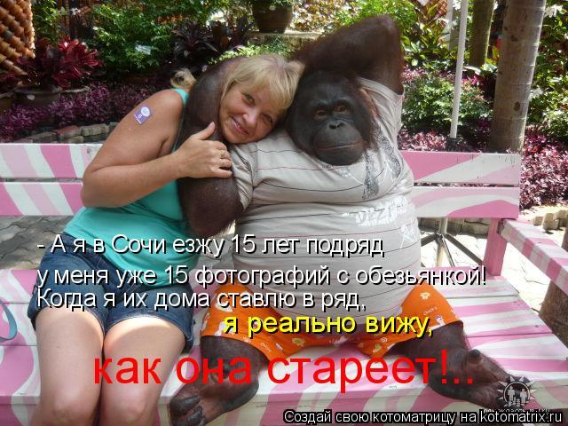 Котоматрица: - А я в Сочи езжу 15 лет подряд у меня уже 15 фотографий с обезьянкой! Когда я их дома ставлю в ряд,  я реально вижу,  как она стареет!..