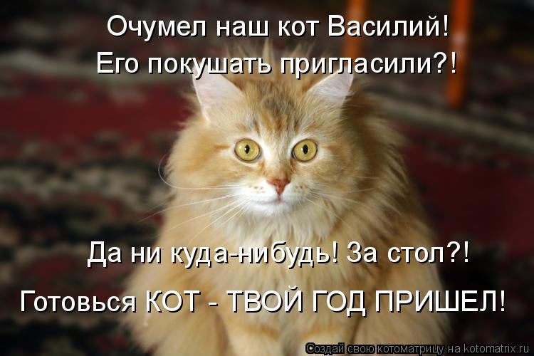 Котоматрица: Очумел наш кот Василий! Его покушать пригласили?! Да ни куда-нибудь! За стол?! Готовься КОТ - ТВОЙ ГОД ПРИШЕЛ!
