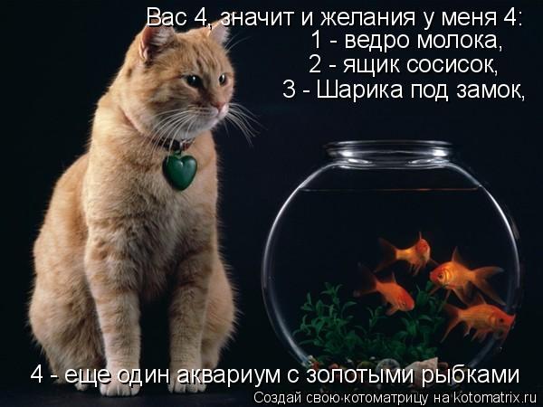 Котоматрица: Вас 4, значит и желания у меня 4: 1 - ведро молока, 2 - ящик сосисок, 3 - Шарика под замок, 4 - еще один аквариум с золотыми рыбками