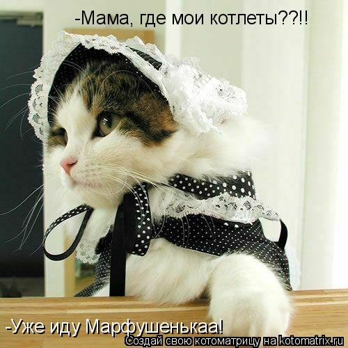 Котоматрица: -Уже иду Марфушенькаа! -Мама, где мои котлеты??!!