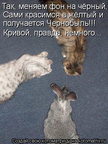 Котоматрица: Так, меняем фон на чёрный,  Сами красимся в жёлтый и получается Чернобыль!!! Кривой, правда, немного...