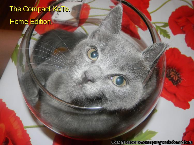 Котоматрица: The Compact KoTe. Home Edition.