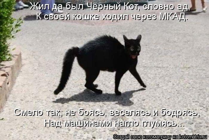 Котоматрица: Жил да был Чёрный Кот, словно ад, К своей кошке ходил через МКАД. Смело так, не боясь, веселясь и бодрясь, Над машинами нагло глумясь...