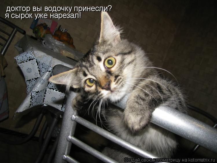 Котоматрица: доктор вы водочку принесли?  я сырок уже нарезал!