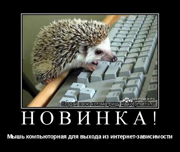 Котоматрица: Новинка! Мышь компьюторная для выхода из интернет-зависимости