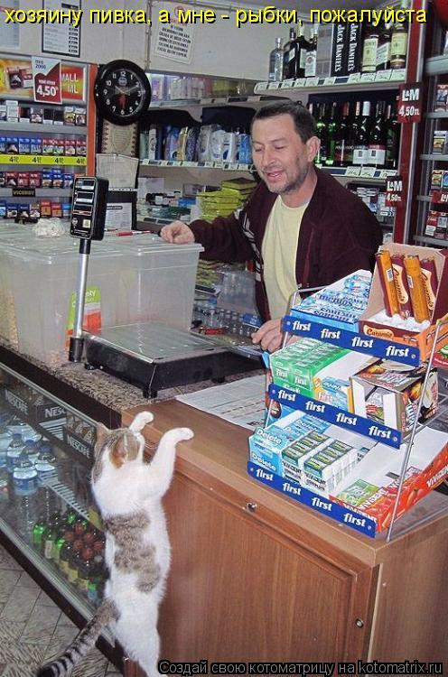 Котоматрица: хозяину пивка, а мне - рыбки, пожалуйста
