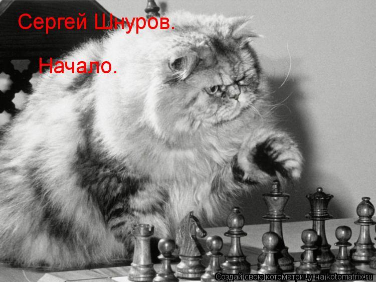 Котоматрица: Сергей Шнуров. Начало.