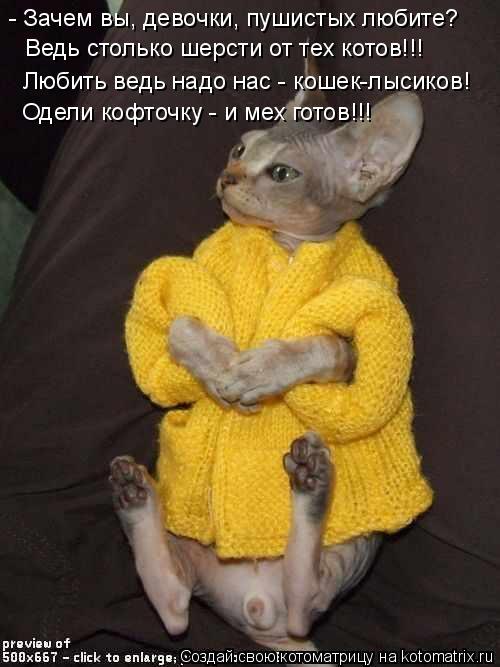Котоматрица: - Зачем вы, девочки, пушистых любите? Ведь столько шерсти от тех котов!!! Любить ведь надо нас - кошек-лысиков! Одели кофточку - и мех готов!!!