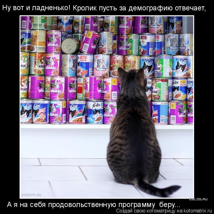 Котоматрица: Ну вот и ладненько! Кролик пусть за демографию отвечает, А я на себя продовольственную программу  беру...