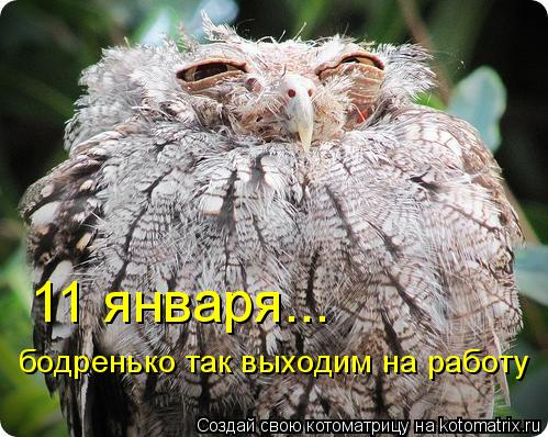 http://kotomatrix.ru/images/lolz/2010/12/26/776542.jpg