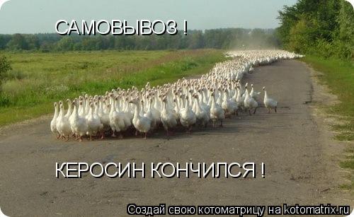 Котоматрица: САМОВЫВОЗ ! КЕРОСИН КОНЧИЛСЯ !