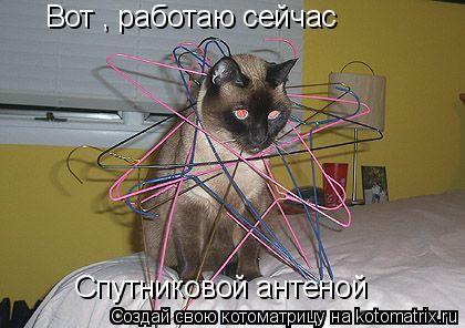 Котоматрица: Вот , работаю сейчас  Спутниковой антеной