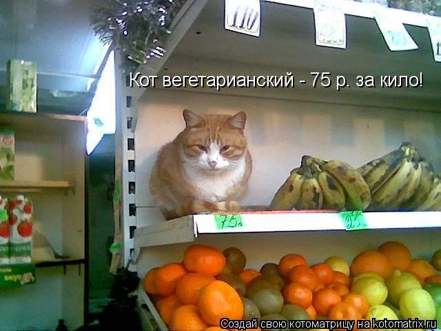 Котоматрица: Кот вегетарианский - 75 р. за кило!