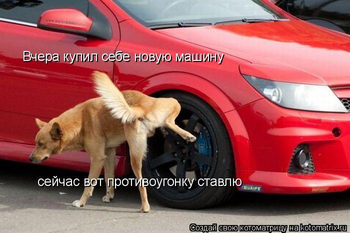 Котоматрица: Вчера купил себе новую машину сейчас вот противоугонку ставлю