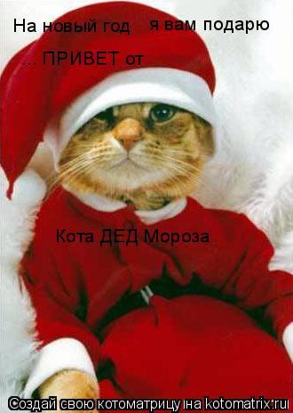 Котоматрица: На новый год я вам подарю ... ПРИВЕТ от Кота ДЕД Мороза
