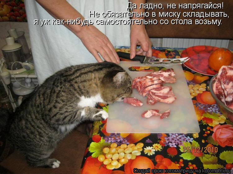 Котоматрица: Да ладно, не напрягайся! Не обязательно в миску складывать, я уж как-нибудь самостоятельно со стола возьму.