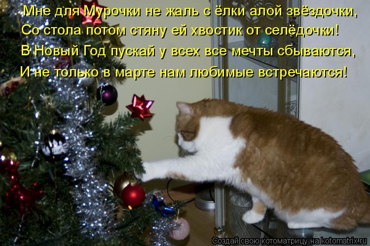 http://kotomatrix.ru/images/lolz/2010/12/27/777513.jpg