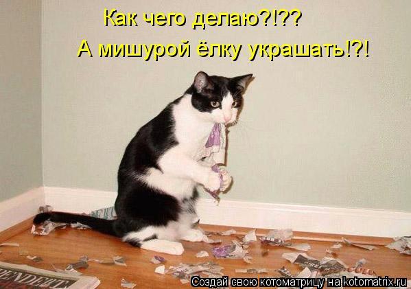 Котоматрица: Как чего делаю?!?? А мишурой ёлку украшать!?!