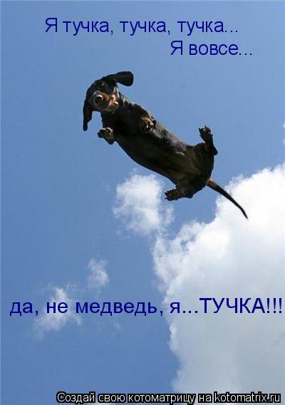 Котоматрица: Я тучка, тучка, тучка... Я вовсе... да, не медведь, я...ТУЧКА!!!