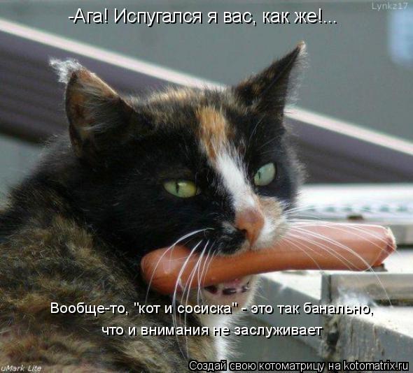 """Котоматрица: -Ага! Испугался я вас, как же!... что и внимания не заслуживает Вообще-то, """"кот и сосиска"""" - это так банально,"""