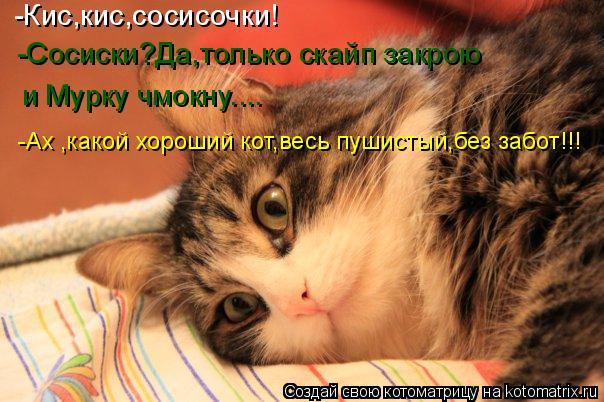 Котоматрица: -Кис,кис,сосисочки! Сосиски?Да,только скайп закрою и чмокну Мурку..... -Сосиски?Да,только скайп закрою и Мурку чмокну.... -Ах ,какой хороший кот,в