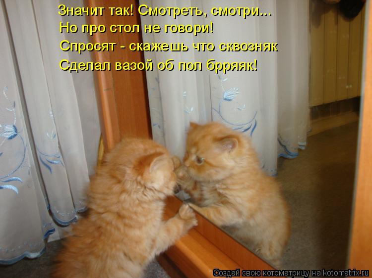 Котоматрица: Значит так! Смотреть, смотри... Но про стол не говори! Спросят - скажешь что сквозняк Сделал вазой об пол брряяк!