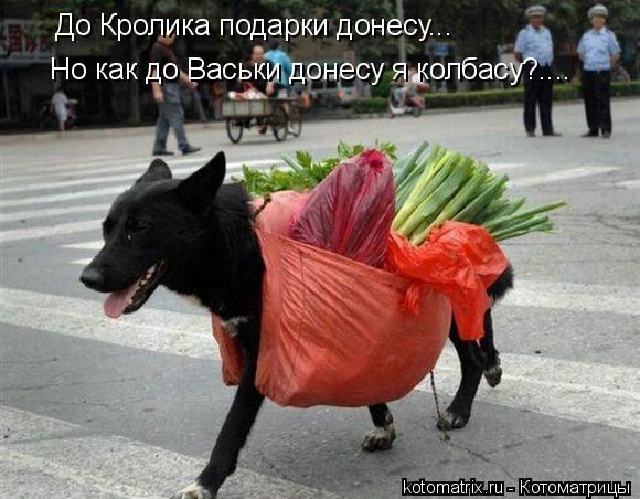 Котоматрица: До Кролика подарки донесу... Но как до Васьки донесу я колбасу?....