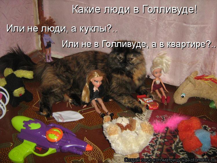 Котоматрица: Какие люди в Голливуде! Или не люди, а куклы?.. Или не в Голливуде, а в квартире?..