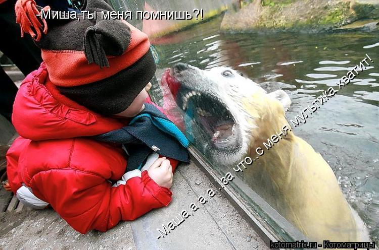 Котоматрица: -Миша,ты меня помнишь?! -Маша,а а а ..за что..с меня мультика хватит! -Маша,а а а ..за что..с меня мультика хватит!
