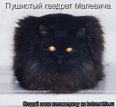 http://kotomatrix.ru/images/lolz/2010/12/29/779739.jpg