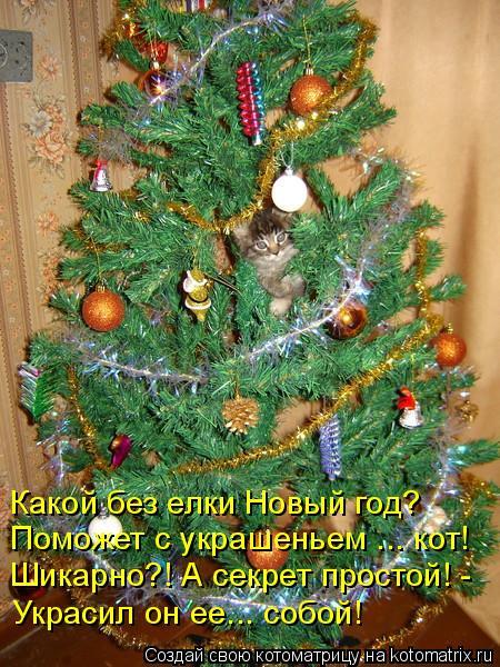 Котоматрица: Поможет с украшеньем ... кот! Шикарно?! А секрет простой! - Украсил он ее... собой! Какой без елки Новый год?