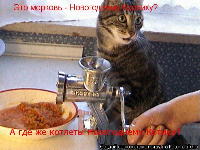 Котоматрица: А где же котлеты Новогоднему Котику? Это морковь - Новогоднему Кролику?