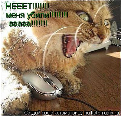 Котоматрица: НЕЕЕТ!!!!!!! меня убили!!!!!!!! ааааа!!!!!!! ааааа!!!!!!!