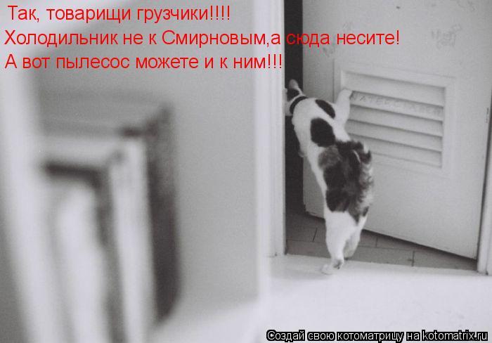 Котоматрица: Так, товарищи грузчики!!!! Холодильник не к Смирновым,а сюда несите! А вот пылесос можете и к ним!!!