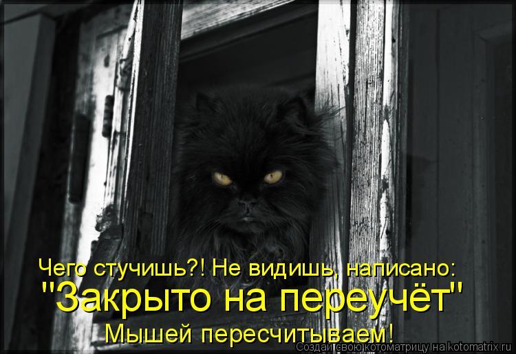 """Котоматрица - Мышей пересчитываем! """"Закрыто на переучёт"""" Чего стучишь?! Не видишь, н"""