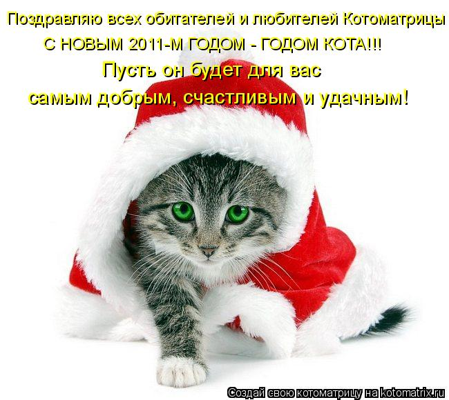 Котоматрица: Поздравляю всех обитателей и любителей Котоматрицы С НОВЫМ 2011-М ГОДОМ - ГОДОМ КОТА!!! Пусть он будет для вас  самым добрым, счастливым и удачн