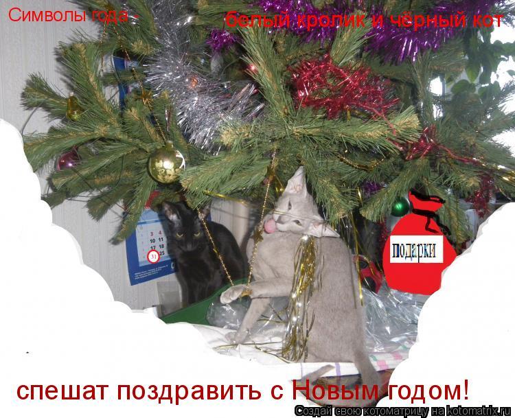 Котоматрица: Символы года -  белый кролик и чёрный кот спешат поздравить с Новым годом!
