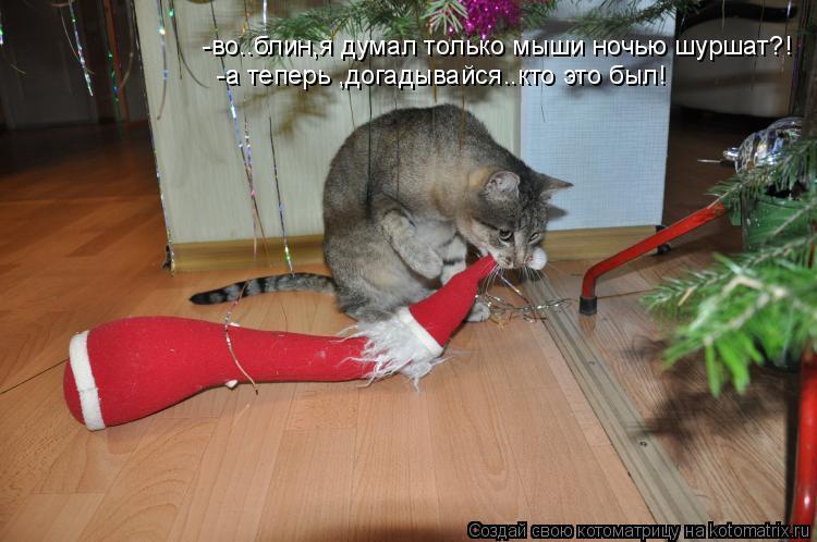 Котоматрица: -во..блин,я думал только мыши ночью шуршат?! -а теперь ,догадывайся..кто это был!